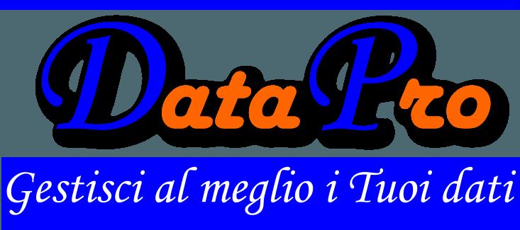 Data Pro 1.0: Database Application personalizzata